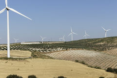 Agricultural landscape with windmills Royalty Free Stock Image