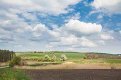 Agricultural landscapes Stock Image