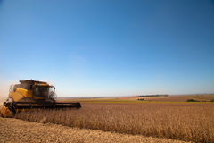 Agricultural machine harvesting soybean field. Royalty Free Stock Photos