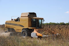 Agricultural machinery (combine) in harvest Stock Photo