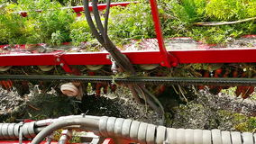 Agricultural machinery for harvesting of carrots stock video footage