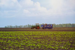 Agricultural machinery - tractor in field. Background stock photo