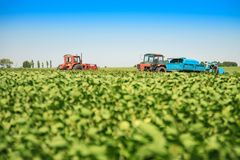 Agricultural machines in a soy field in a sunny summer day. Royalty Free Stock Image
