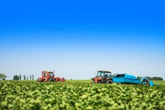 Agricultural machines in a soy field in a sunny summer day. Stock Photo