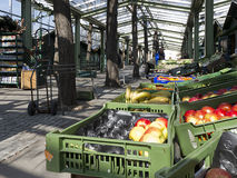 Agricultural market Royalty Free Stock Photos