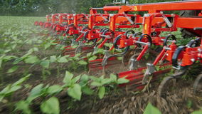Agricultural mechanism cuts the weeds. The camera moves along mechanism stock video