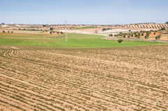 Agricultural mosaic landscape. In Toledo Province, Spain Stock Image