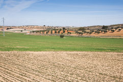Agricultural mosaic landscape. In Toledo Province, Spain Stock Photos
