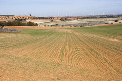 Agricultural mosaic landscape. In Toledo Province, Spain Royalty Free Stock Images