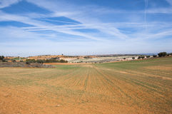 Agricultural mosaic landscape. In Toledo Province, Spain Royalty Free Stock Photography