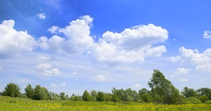 Agricultural panorama landscape Royalty Free Stock Photo