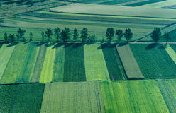 Agricultural Parcel. Bird's eye view of the Fields and Agricultural Parcel Stock Photography