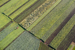 Agricultural Parcel. Bird's eye view of the Fields and Agricultural Parcel Stock Images