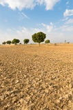 Agricultural ploughed land field in desert Royalty Free Stock Photos