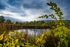 Agricultural pond upstate NY Royalty Free Stock Photography