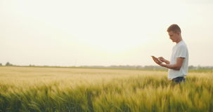 Agricultural producer using digital tablet in agricultural field stock footage