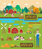 Agricultural production infographic. Vector illustration Stock Photography