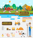 Agricultural production infographic.vector. Illustration Royalty Free Stock Photos