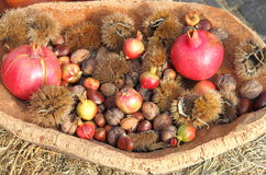 Agricultural products of autumn royalty free stock image