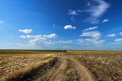 Agricultural road through fields. Rural road through ploughed fields and corn under blue sky with clouds Royalty Free Stock Images