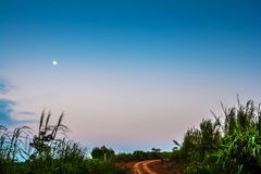 Agricultural road And Moon Stock Images