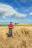 Agricultural scene, farmer or agronomist inspect damaged wheat f Royalty Free Stock Image