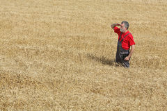 Agricultural scene, farmer or agronomist inspect wheat field Stock Photo