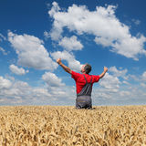 Agricultural scene, happy farmer in wheat field. Agriculture, happy farmer gesturing  in field ready to harvest, with hands and thumbs up Stock Images