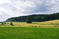 Agricultural scenery Royalty Free Stock Photos