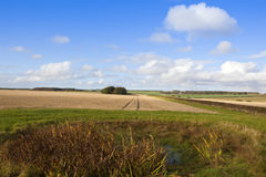 Agricultural scenery Stock Photos