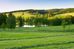 Agricultural scenery with pond Royalty Free Stock Image