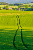Agricultural scenery with the trace Stock Image