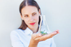 Agricultural scientist woman Royalty Free Stock Images