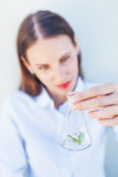 Agricultural scientist woman Stock Images