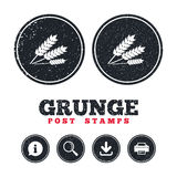 Agricultural sign icon. Gluten free or No gluten. Stock Images