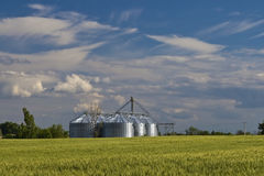 Agricultural silo. Was built metal agricultural silo the afield royalty free stock images