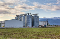 Agricultural silos Stock Images