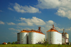 Agricultural silos in the fields Stock Photography
