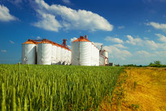 Agricultural silos in the fields Royalty Free Stock Images