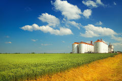 Agricultural silos under blue sky, in the fields Stock Photo