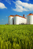 Agricultural silos under blue sky, in the fields Royalty Free Stock Image