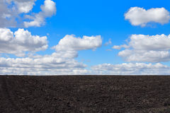 Agricultural spring field. Agricultural arable spring field with blue sky and clouds Stock Image