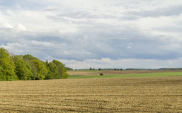 Agricultural springtime scenery Royalty Free Stock Images