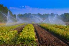 Agricultural sprinkler Royalty Free Stock Images