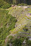 Agricultural stone terraces at  Machu Picchu in Peru Royalty Free Stock Photography