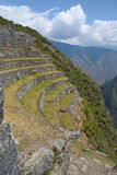 Agricultural terrace at the ancient Inca ruins of Royalty Free Stock Photo