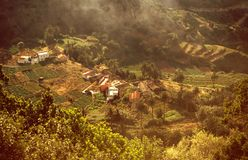 Agricultural terraces Gomera Stock Photo