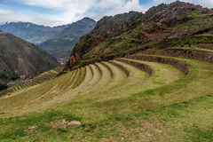 Agricultural terraces of Inca ruins of Pisac, Peru Stock Image
