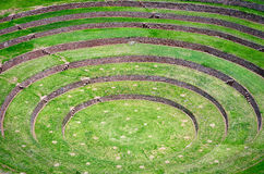 Agricultural terraces in Moray, Peru Royalty Free Stock Photos