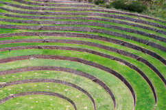 Agricultural terraces in Moray, Peru Stock Images